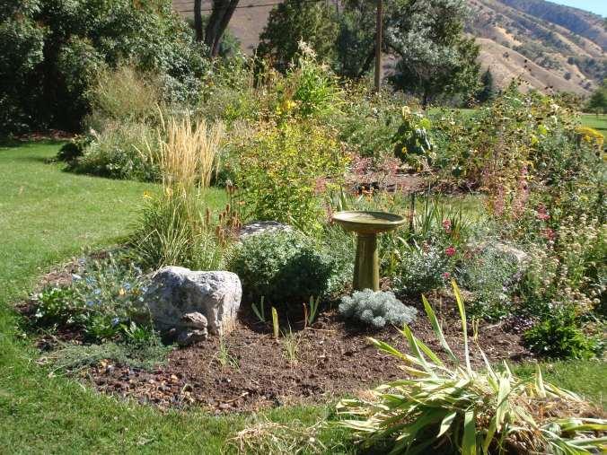 garden beds with birdbath
