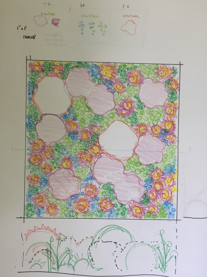 drawing showing shapes of where plants will go